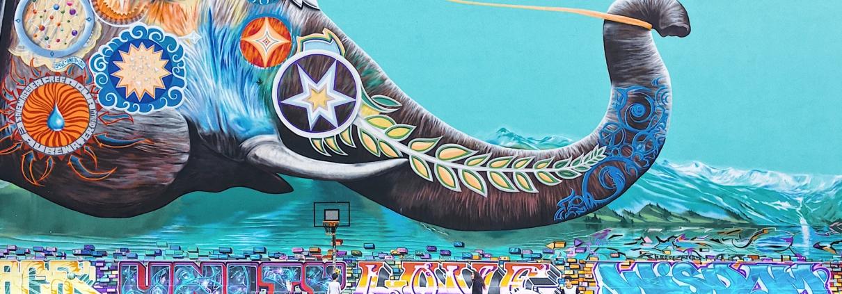 elephant graffiti wall art at basketball court
