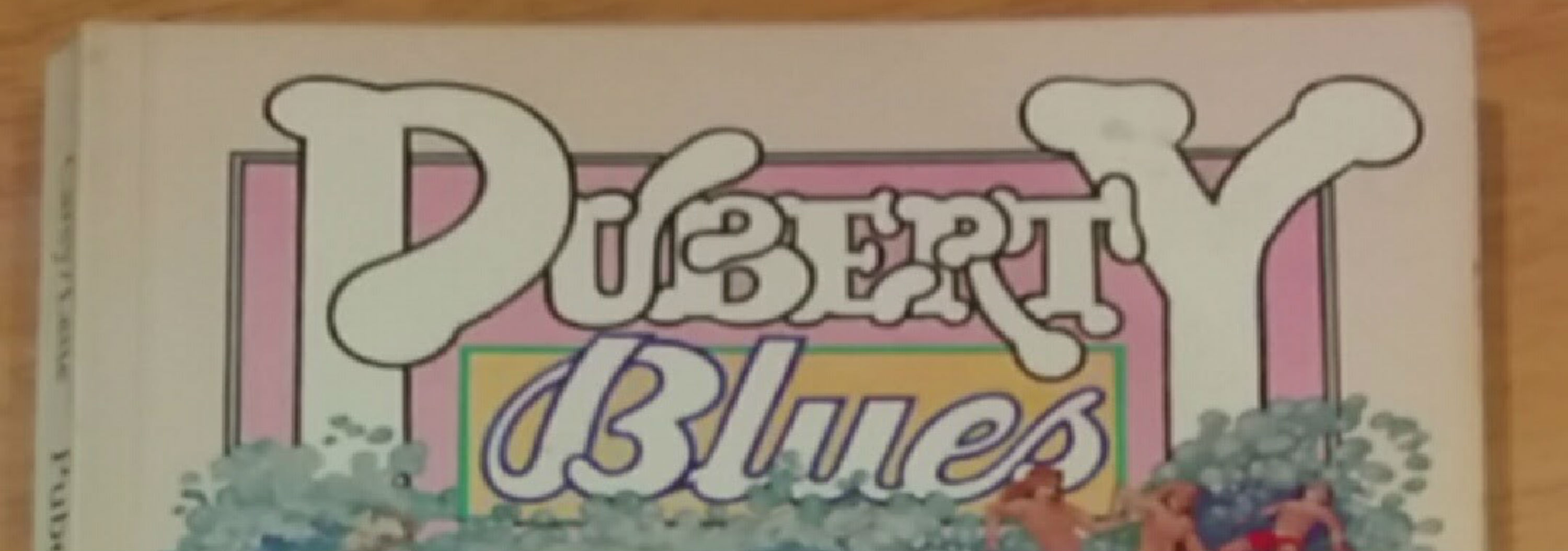 """Book cover title """"Puberty Blues"""""""